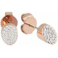 Ck Brilliant Rose Gold Earring